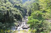 神山瀑布 20190924:IMG_0726.jpg