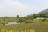 大漢溪山豬湖生態親水園區 20181107:IMG_9215 水雲池.jpg