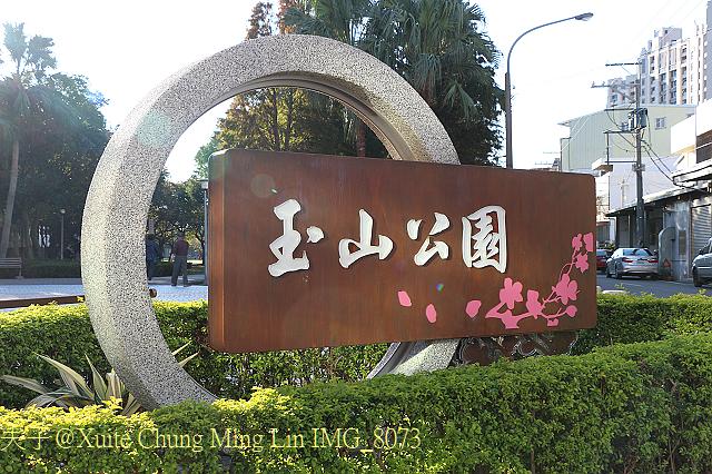 IMG_8073.jpg - 桃園市桃園區玉山公園 落羽松大道 2016/12/31