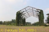 林內新公園 (林內舊庄役埸 - 寶隆紙廠) 20191102:IMG_4800-1.jpg