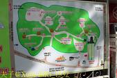 越南 峴港 五行山 20200125:IMG_1332.jpg