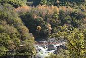 軍艦岩吊橋,尖石鄉秀巒全新景點 (秀巒道路 5K處)。 20160107:CHU_1496.jpg
