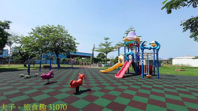 31070.jpg - 高雄梓官梓平公園砲彈樹 20210924