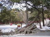 中國北京 明十三陵之定陵 2010/02/12:P1010051.JPG