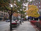 20101023 Nazareth College, Pittsford NY USA:DSC04638.JPG