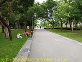 台北市大安森林公園 20200802:IMG_20200802_141130.jpg