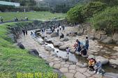 內湖大溝溪生態園區 春節走春看花海 20210131:IMG_3925.jpg
