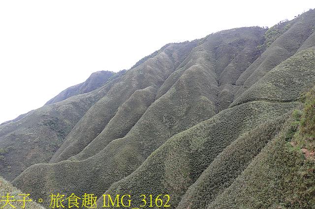 IMG_3162.jpg - 宜蘭礁溪 抹茶山 20200410