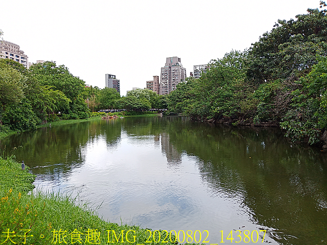 IMG_20200802_143807.jpg - 台北市大安森林公園 20200802