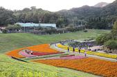 內湖大溝溪生態園區 春節走春看花海 20210131:IMG_3883.jpg