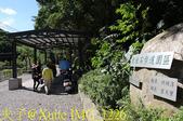 新竹尖石 那羅青蛙石園區輕旅行 20190823:IMG_1226.jpg