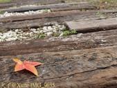 2014楓石門 野餐日 (桃園石門水庫 南苑公園) 2014/12/13:IMG_9635.jpg