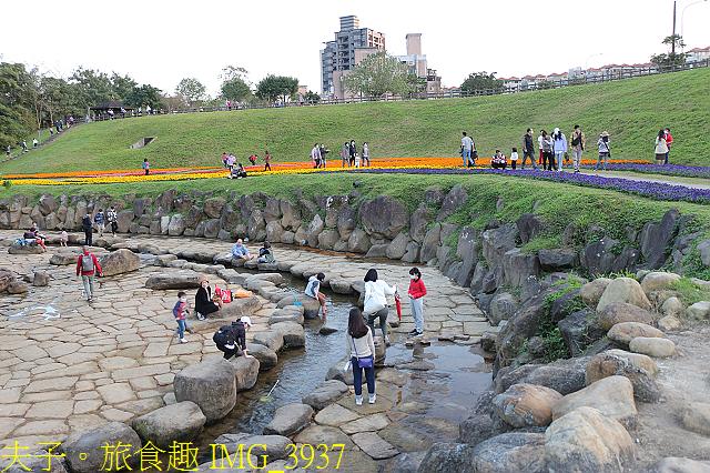IMG_3937.jpg - 內湖大溝溪生態園區 春節走春看花海 20210131