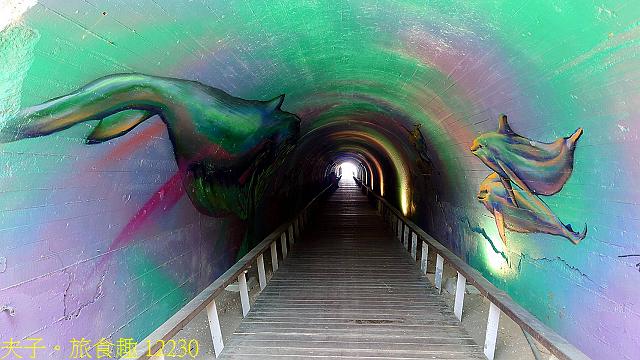 12230.jpg - 高雄旗津 星空隧道美麗幻化成為海底隧道 20210512