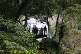 烏來 內洞森林遊樂區 內洞瀑布 20181121:IMG_9635.jpg