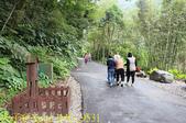 烏來 內洞森林遊樂區 內洞瀑布 20181121:IMG_9531.jpg