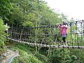 雪霸農場+樂山林道檜山巨木群-3 20090702-03 :P1030933.JPG