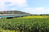 舊大安溪橋 & 日南車站 20200620:IMG_4234.jpg