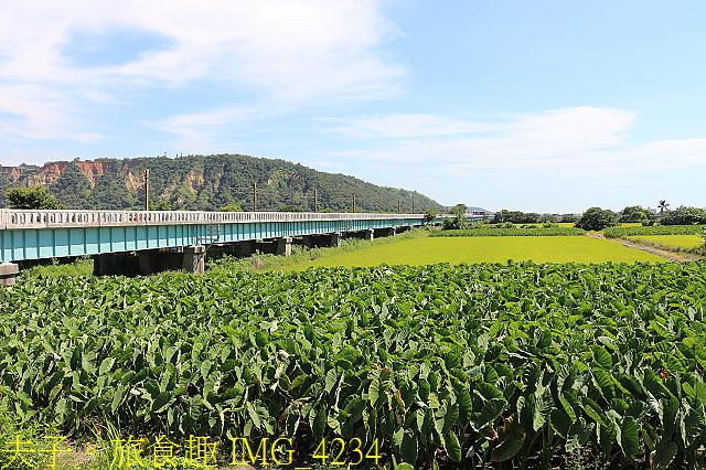 IMG_4234.jpg - 舊大安溪橋 & 日南車站 20200620