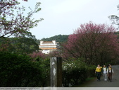 汐止彌勒山天道清修院 2011/03/14 :P1010716.JPG