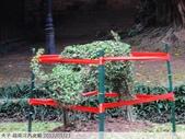 越南河內文廟 2012/01/21:P1040659.jpg