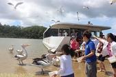 澳洲 Catch-A-Crab 黃金海岸翠德 (Tweed) 河捕蟹探險之旅 2013/02/07:IMG_7581.jpg