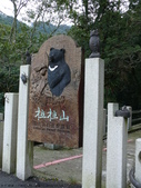桃園上巴陵拉拉山 (達觀山) 2009/11/26 :P1050603.JPG
