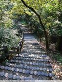 桃園蘆竹五酒桶山六福步道崙頭土地公 2011/08/03:P1040703.JPG