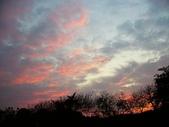 2012/02/20 回暖的傍晚:P1110182.jpg