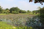 大漢溪山豬湖生態親水園區 20181107:IMG_9124 雲天池.jpg