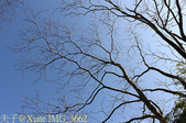 八仙山森林遊樂區 2015/02/22:IMG_3662.jpg