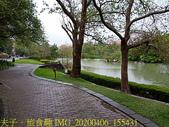 台灣大學生態池 複刻瑠公圳水源地 20200406:IMG_20200406_155431.jpg