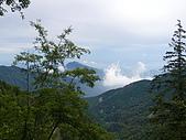 雪霸農場+樂山林道檜山巨木群-3 20090702-03 :P1030928.JPG