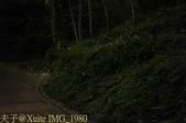 新竹峨眉獅山藤坪親水公園螢火蟲大爆發 20140503 :IMG_1980.jpg