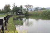 桃園大溪河濱公園 20181107:IMG_9279.jpg