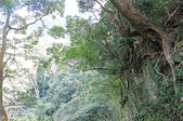 新竹北埔猴洞一線天 2013/01/31 :IMG_6772.jpg