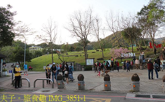 IMG_3851-1.jpg - 內湖大溝溪生態園區 春節走春看花海 20210131