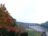 石門水庫楓葉紅了 2011/11/28:P1030436.jpg