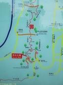 林口新林步道拍五楊高架車軌 2013/05/25:IMG_1728.jpg