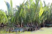 迦南島 會安秋盆河 搭竹桶船 釣螃蟹 2020123:IMG_0646.jpg