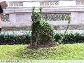 越南河內文廟 2012/01/21:P1040661.jpg