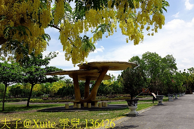 136426.jpg - 屏東內埔 榮譽國民之家 (屏東榮家) 阿勃勒 20180609