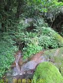 三峽鳶山彩壁 福德坑山 (鳶山) 20200603:IMG_5491.jpg