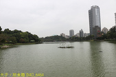 台北市內湖區碧湖公園 20210317:IMG_6464.jpg
