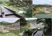 陽明山硫磺谷 2018/05/17:180314313.jpg