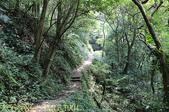 新北市汐止大尖山風景區 - 茄苳瀑布 2014/07/14:IMG_1904.jpg