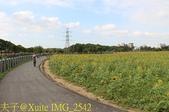 龍潭花海 2017/10/26:IMG_2542.jpg