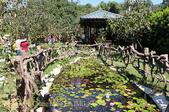 金漢杮餅教育農園 20151017:IMG_8446.jpg