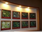 台北坪林茶業博物館+虎字碑 2010/11/04:P1110165.JPG