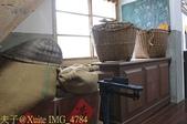 桃園新屋稻米故事館  2014/07/17 :IMG_4784.jpg